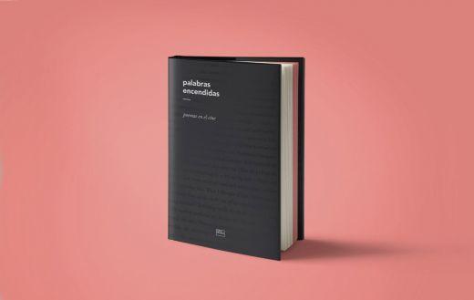 Aspecto general del libro