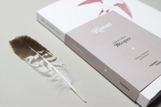 Detalle de cubierta y pluma